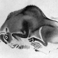 Раненый бизон. Живописное изображение в Альтамирской пещере