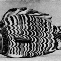 Сосуд в форме рыбы из Ахетатона (Эль-Амарны). Цветное стекло. XVIII династия. Начало 14 в. до н. э. Лондон. Британский музей