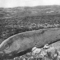 Вишап (каменное изваяние в форме рыбы) в Имирзеке (Армянская ССР). 2—1 тысячелетия до н. э.